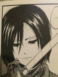 mlg_Mikasa