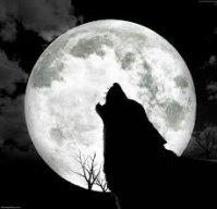 masterwolf555